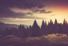 夏天山横向 旅游帐篷临近森林 免版税库存照片