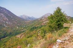 夏天山横向 Sitnica地区,黑山 库存照片