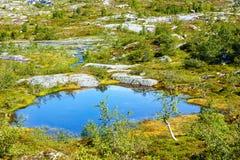 夏天山湖(挪威) 免版税库存图片