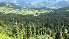 夏天山高原高地风景看法在阿尔特温,土耳其的黑海地区 影视素材