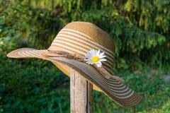 夏天帽子在庭院里 库存图片