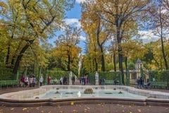 夏天庭院在圣彼德堡 库存图片