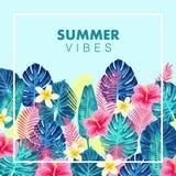夏天异乎寻常和热带背景设计 向量例证