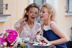 夏天成套装备的二个美丽的女孩 免版税库存图片