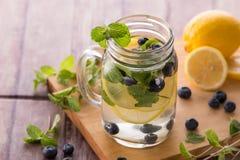 夏天新鲜水果饮料 水果味道的水混合用柠檬, b 免版税库存照片