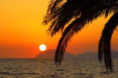 夏天日落、异乎寻常的场面与棕榈剪影和太阳在天际 图库摄影