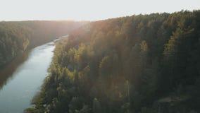 夏天日落的发光通过树自然秀丽新的起点晚年的天线关闭的太阳林木森林 股票视频