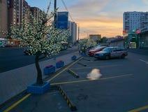 夏天日落视图在莫斯科 免版税库存图片