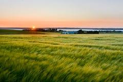 夏天日落,丹麦 免版税库存照片