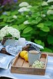 夏天早餐在美丽的开花的庭院里 茶用柠檬,八仙花属在木桌上开花有绿色背景 免版税库存照片