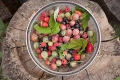 夏天明亮的莓果顶视图 免版税库存图片