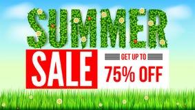 夏天春天和夏天绿色叶子的题字开花,瓢虫 夏天热的折扣 卖广告横幅 免版税图库摄影