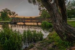 夏天晚上风景 从海岸的看法到在一条河的步行桥在日落背景的一个城市公园 图库摄影