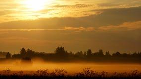 夏天有薄雾的早晨,俄国偏僻地区 免版税库存照片