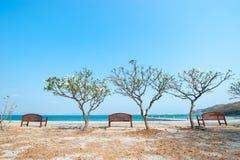 夏天木海滩睡椅 图库摄影