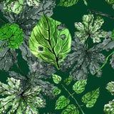 夏天样式 绿色叶子 自然墙纸 蝴蝶下落花卉花重点模式黄色 植物的样式 艺术背景框架葡萄离开纸纹理水彩 库存例证