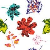 夏天样式 颜色叶子 自然墙纸 蝴蝶下落花卉花重点模式黄色 植物的样式 艺术背景框架葡萄离开纸纹理水彩 向量例证