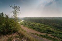 夏天森林和河的全景 库存图片