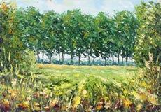 夏天森林沼地,绿色树,草,植被 免版税库存图片
