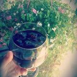 夏天椰树可乐 库存照片