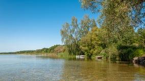 夏天横向 一个大湖的海岸的美丽的景色有树的在水和藤茎在清楚的蓝天下 库存照片