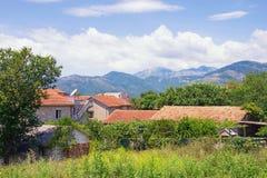 夏天横向 与红色屋顶的大厦在山和绿色树中 黑山,蒂瓦特 免版税图库摄影