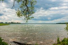 夏天横向 从湖的海岸的看法 免版税图库摄影