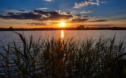 夏天横向 在日落水 库存照片