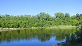 夏天横向 平静的自然绿的森林、干净的河和一个小海滩 库存照片