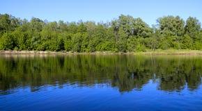 夏天横向 平静的自然绿的森林、干净的河和一个小海滩 免版税图库摄影