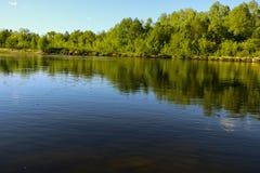 夏天横向 平静的自然绿的森林、干净的河和一个小海滩 免版税库存图片