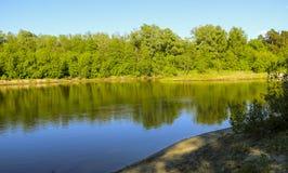 夏天横向 平静的自然绿的森林、干净的河和一个小海滩 免版税库存照片