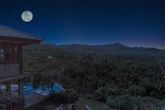夏天横向 从针叶树森林的雾在满月光的晚上围拢山上面 免版税图库摄影