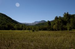 夏天步行通过一个美丽的谷 免版税图库摄影