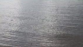 夏天波浪的河水雨 股票视频