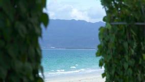 夏天海滩的蓝色海,山和绿色热带植物环境美化 夏天海滩和绿色植物在蓝色海和 影视素材