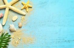 夏天海背景 贝壳、海星和棕榈在木蓝色背景分支 库存照片
