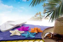 夏天海滩概念 免版税库存图片