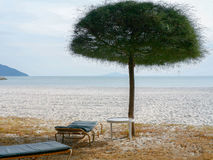 夏天海滩邀请 免版税库存照片
