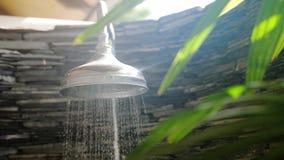 夏天淋浴喷头喷水在有热带植物的美丽的卫生间里在与透镜火光作用的好日子 慢 股票录像