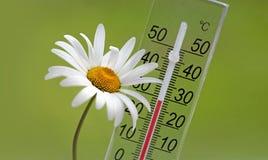 夏天温度 免版税库存图片