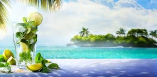夏天热带鸡尾酒饮料;享受mojito天堂 免版税库存图片