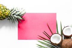 夏天热带水果的概念 菠萝、cocount和棕榈在白色背景顶视图大模型分支 库存照片