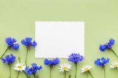 夏天矢车菊里面和框架的老空的照片  库存图片