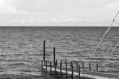 夏天空气贝加尔湖黑白的俄罗斯 图库摄影