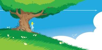 夏天结构树 免版税库存照片