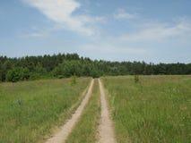 夏天绿色多小山沼地 库存照片