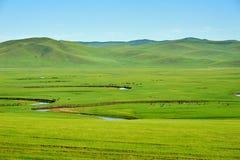 夏天绿色牧场地和弯曲河 免版税库存照片