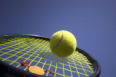 夏天网球 免版税库存图片