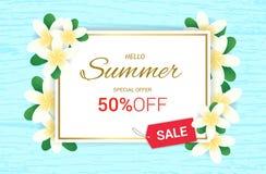 夏天羽毛开花花卉框架或夏天 库存例证